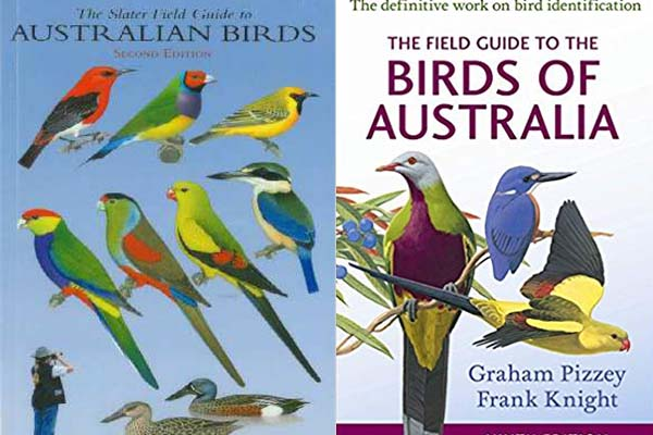 Best 5 Australian Bird Guides