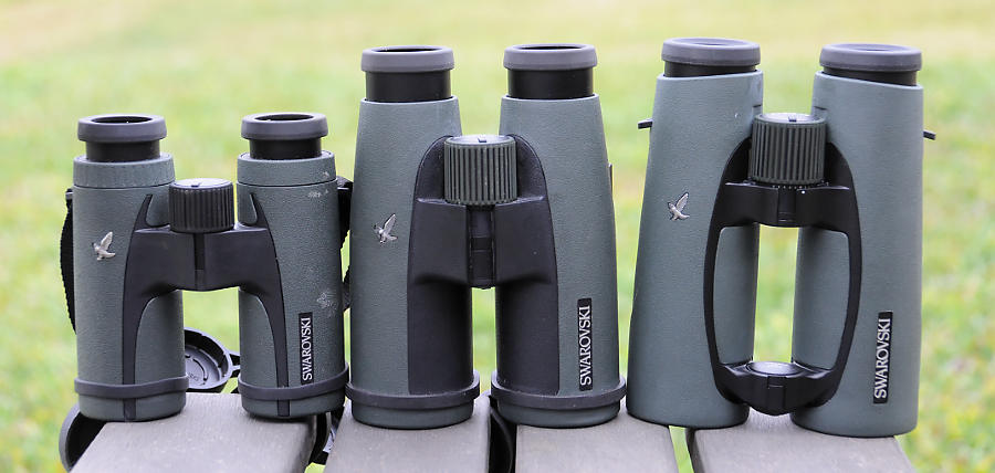 The Best Binoculars for Birdwatching
